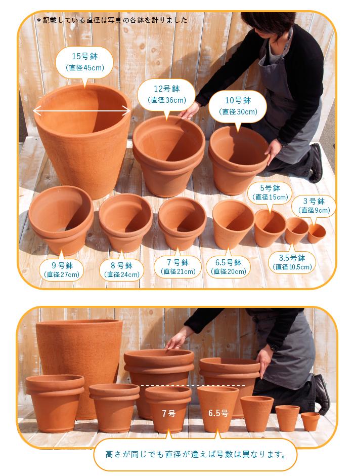 植木鉢の号数の説明